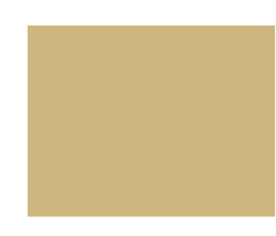 p-17-c-89