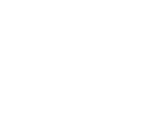 p-06-c-41